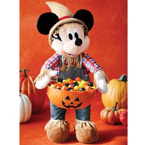 Mickey Mouse Scarecrow candy holder...$29.99